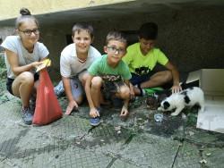 Четири хлапета трогнаха с благородна постъпка