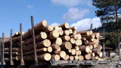 7 кубика дърва за огрев без марка и документи са задържали служителите на РДГ