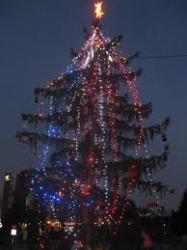 ПРЕДСТОЯЩО: запалване светлините на коледната елха