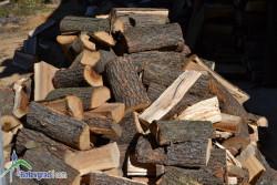 12 човека ще бъдат подпомогнати с дърва за огрев