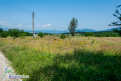 Подлагат на обществено обсъждане два терена за нов гробищен парк