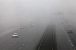 При гъста мъгла най-важното за безопасността на движението е да се кара с ниска скорост и да се спазва дистанция