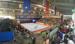 Гледайте онлайн турнира по акробатика в Португалия