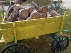 Извършителка на кражба на дърва за огрев бе разкрита от служители на РУ - Етрополе