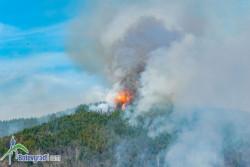 Основни правила за пожарна безопасност в полски и горски фонд