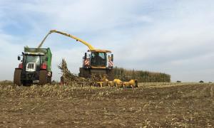 ОДМВР предприема мерки за безопасност при прибиране на реколта 2019