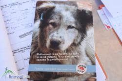 Поредна кампания за овладяване популацията на бездомните кучета и котки