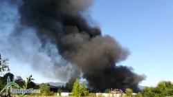 Екологът Ева Нишева: Търся връзка с мобилна лаборатория, за да изследва въздуха заради разразилия се пожар