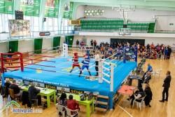 Бокс: Ботевград е домакин от кръг на държавния шампионат за жени и девойки