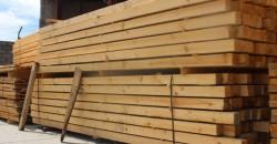 Горски задържаха 76 кубика незаконна дървесина във Врачеш
