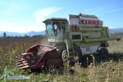 В ОбС е постъпило предложение за определяне на годишните наемни цени за отдаване на земеделски земи