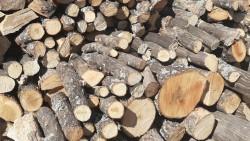 Заловиха криминално проявен и осъждан с дърва за огрев са без контролна горска марка