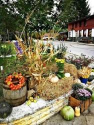 Есенна композиция краси центъра на Липница