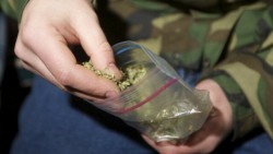 Двама ботевградчани попаднаха в ареста за притежание на суха тревиста маса, реагираща на марихуана