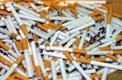 Над 12 хиляди къса контрабандни цигари са иззети от два адреса във Врачеш