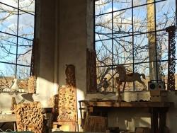 Изложба дърворезба на Димитър Христов в Исторически музей – Ботевград