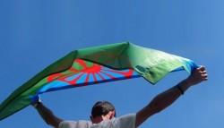 Международният ден на ромите ще бъде отбелязан с доброволческа инициатива