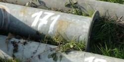 Спипаха 43-годишен врачежанин да краде метални тръби от оранжерия в Зверино