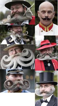 конкурс за мустаци