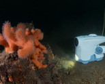 Първият подводен дрон вече е факт